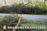 Stormschade tilburgseweg in Moergestel
