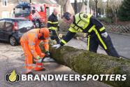 Stormschade bolswardstraat in Tilburg