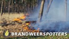 Bosbrand (Zeer grote brand + GRIP 1)  Drunenseweg in Waalwijk